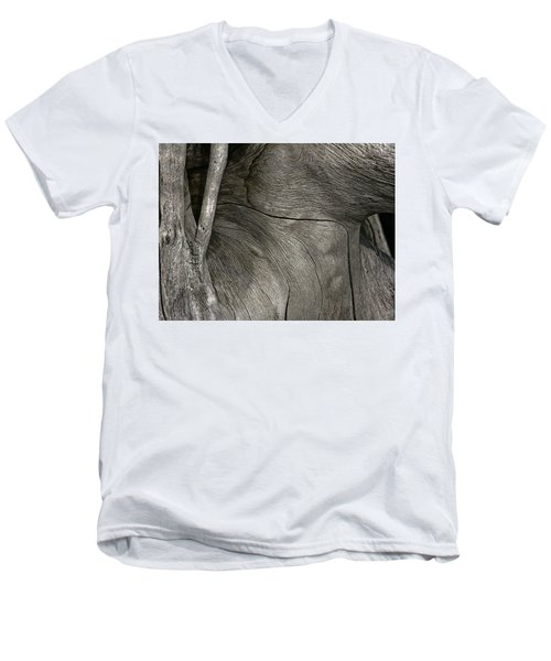 Men's V-Neck T-Shirt featuring the photograph Tree Memories # 26 by Ed Hall