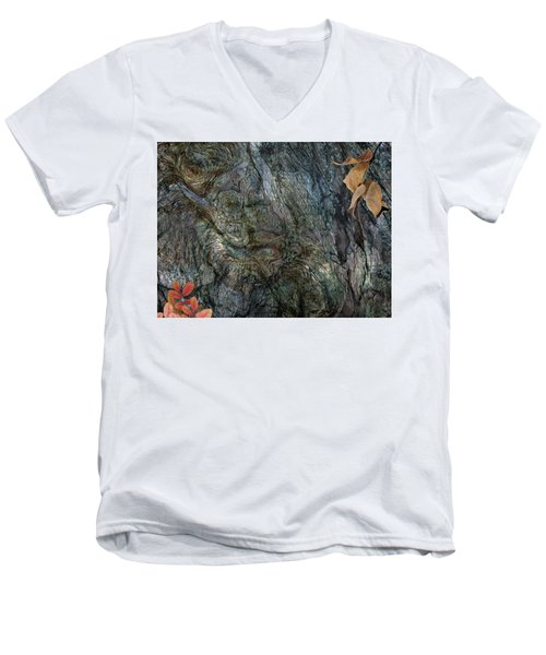 Men's V-Neck T-Shirt featuring the photograph Tree Memories # 33 by Ed Hall