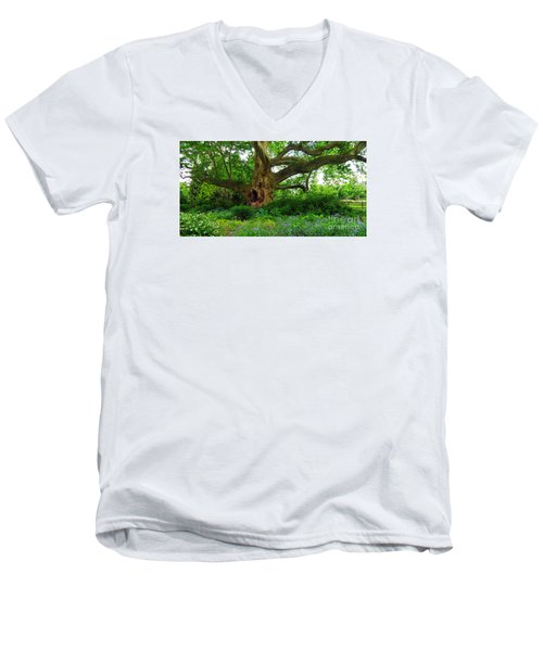 Tree Of Life Men's V-Neck T-Shirt
