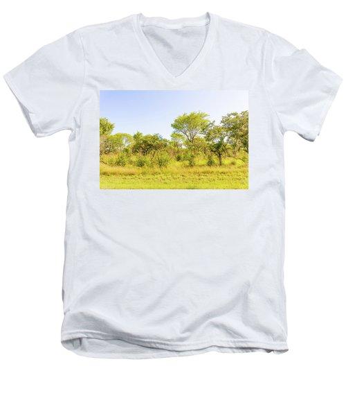 Trees In Zambia Men's V-Neck T-Shirt