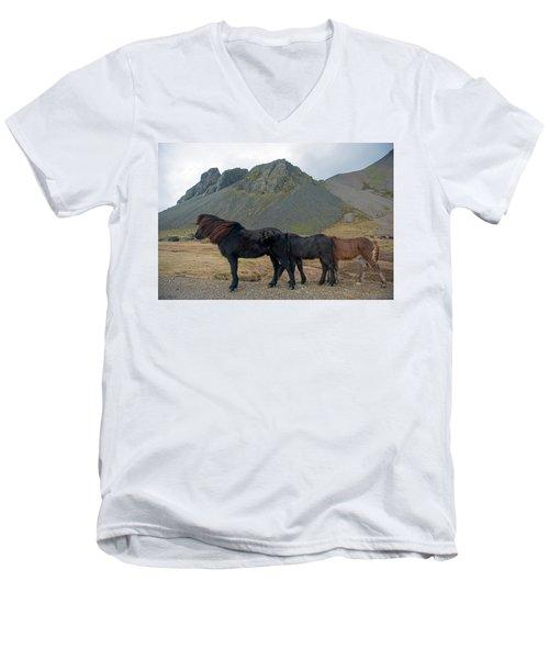 Men's V-Neck T-Shirt featuring the photograph Tri - Color Icelandic Horses by Dubi Roman