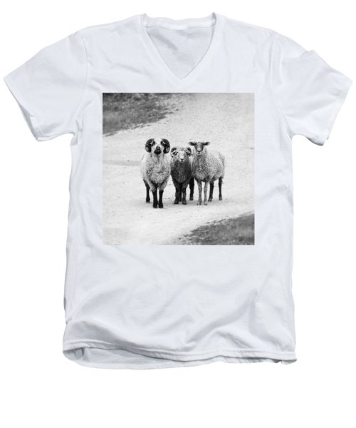 Trio #1478 Men's V-Neck T-Shirt by Andrey Godyaykin