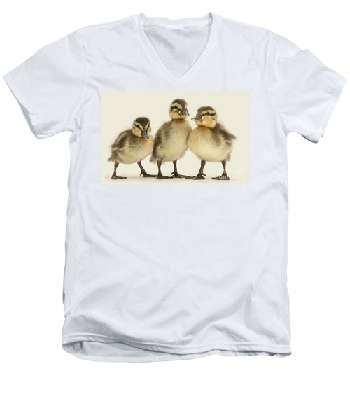 Triple Ducklings Men's V-Neck T-Shirt