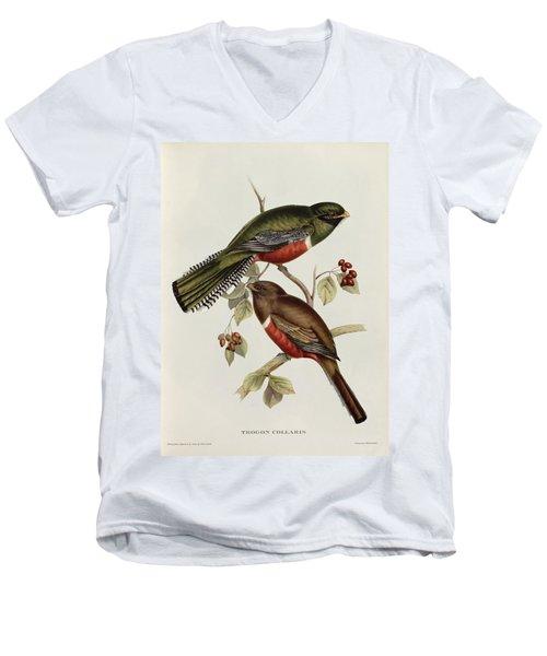 Trogon Collaris Men's V-Neck T-Shirt by John Gould