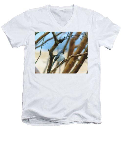 Tufted Titmouse In Tree Men's V-Neck T-Shirt