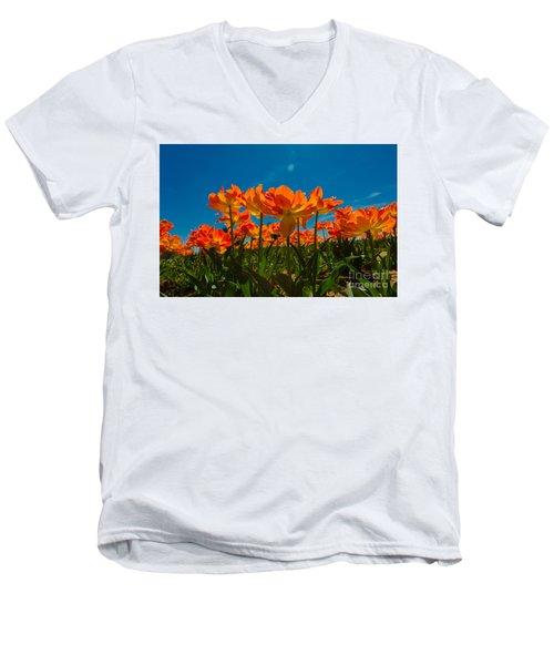 Tulips In The Sun Men's V-Neck T-Shirt by John Roberts