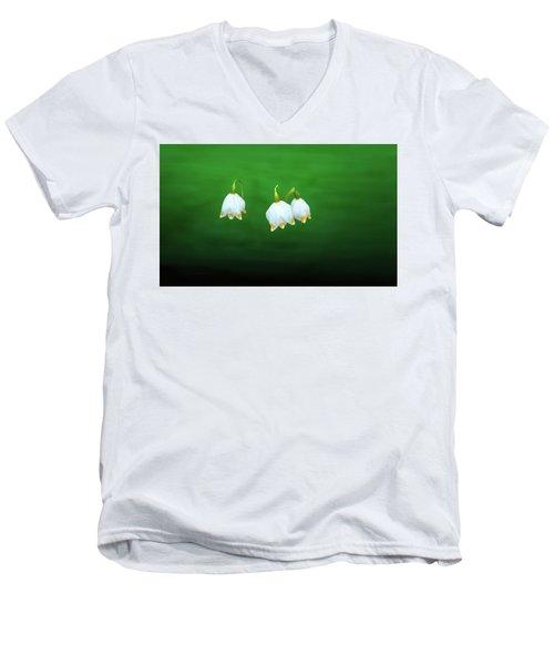 Turkey-eggs On Green #g2 Men's V-Neck T-Shirt