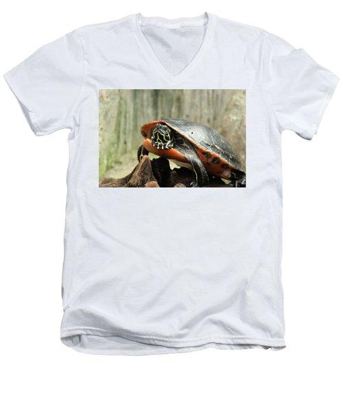 Turtle Neck Men's V-Neck T-Shirt by David Stasiak