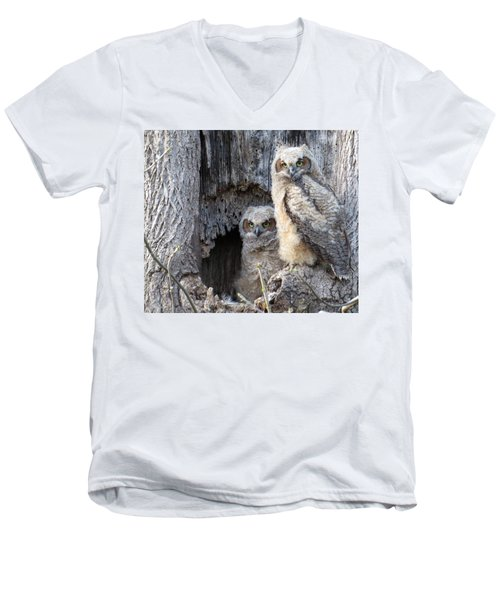 Men's V-Neck T-Shirt featuring the photograph Twin Owls by Jeanette Oberholtzer