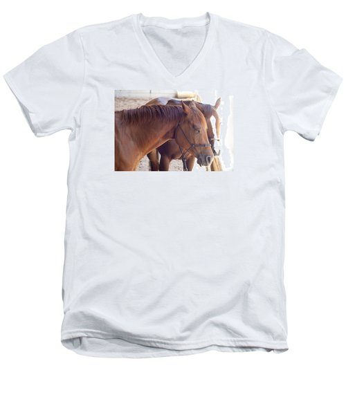 Two Horses Men's V-Neck T-Shirt