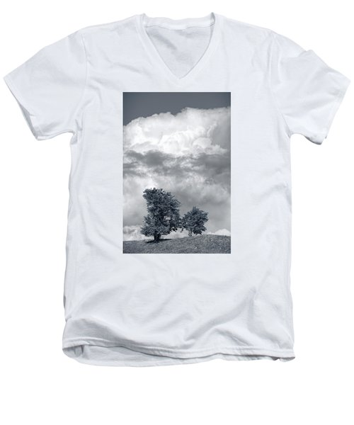 Two Trees #9249 Men's V-Neck T-Shirt by Andrey Godyaykin
