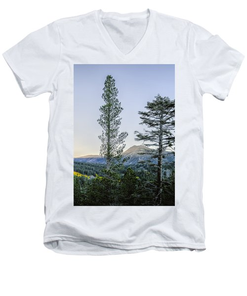 Two Trees Men's V-Neck T-Shirt