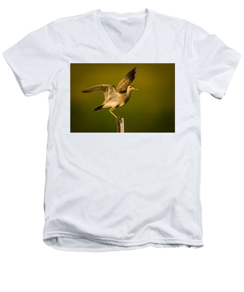 Upland Sandpiper On Steel Post Men's V-Neck T-Shirt