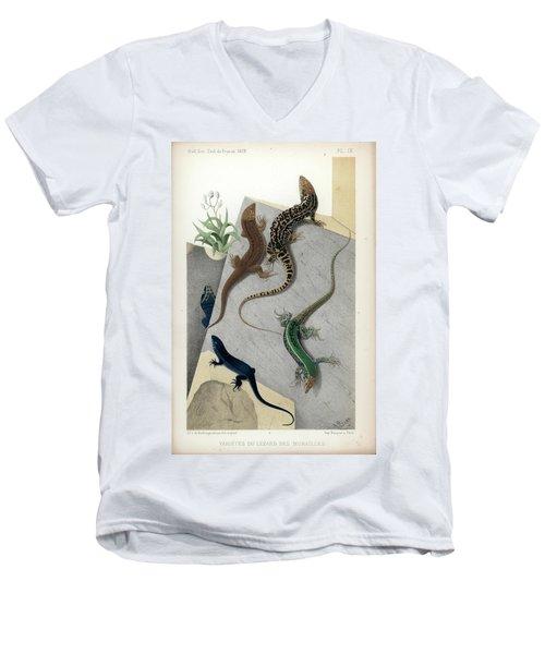 Varieties Of Wall Lizard Men's V-Neck T-Shirt