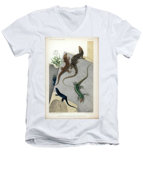 Varieties Of Wall Lizard Men's V-Neck T-Shirt