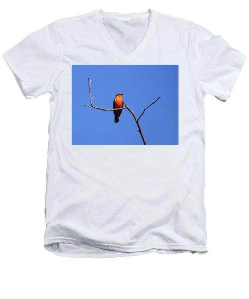 Vermillion Flycatcher Men's V-Neck T-Shirt