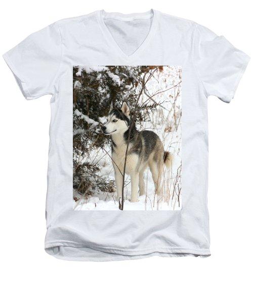 Vigilant Men's V-Neck T-Shirt