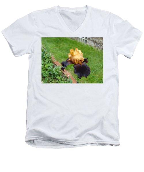 Vigilante Iris Men's V-Neck T-Shirt