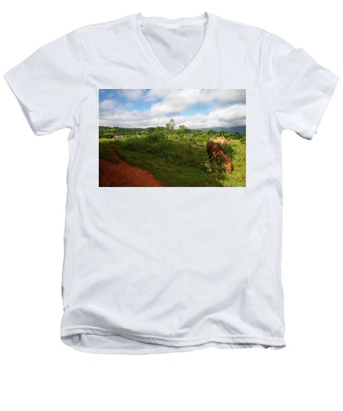 Vinales Valley II Men's V-Neck T-Shirt