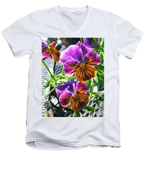 Violas Men's V-Neck T-Shirt
