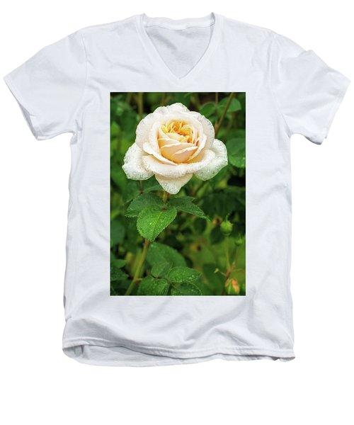 Virtue Of Pureness Men's V-Neck T-Shirt