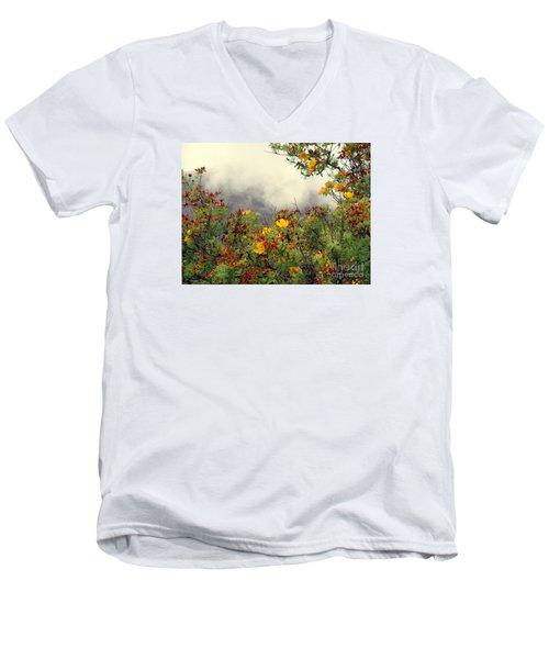 Volcano Scene Reunion Island Men's V-Neck T-Shirt by John Potts