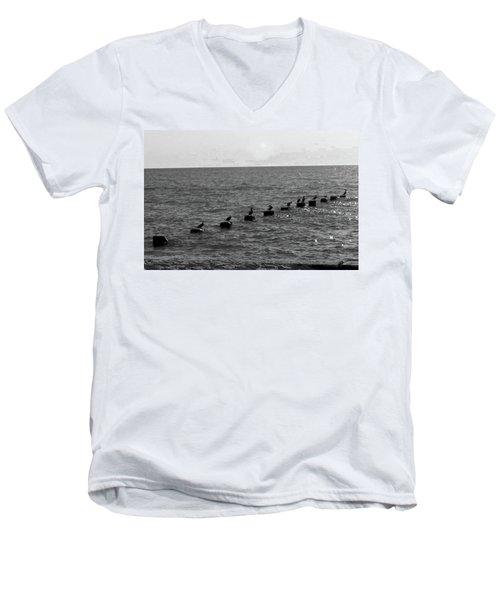 Water Birds Men's V-Neck T-Shirt