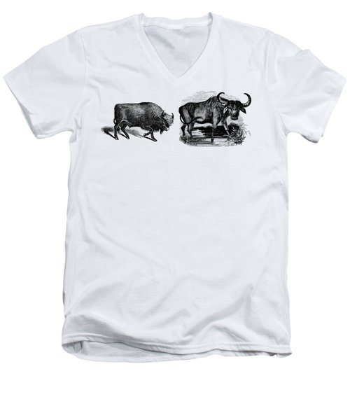 Water Buffalo Bison Animal Illustration Drawing Men's V-Neck T-Shirt
