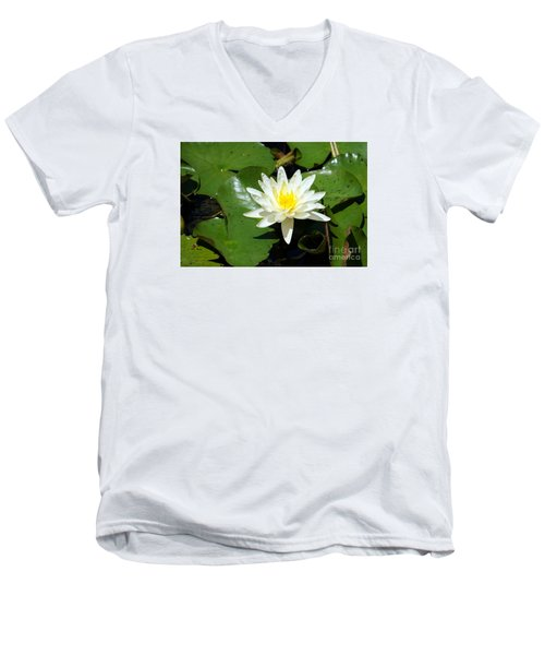 Water Lily 7 Men's V-Neck T-Shirt