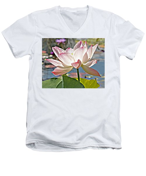 Water Lily Men's V-Neck T-Shirt by Catherine Alfidi