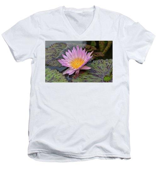 Waterlily Men's V-Neck T-Shirt