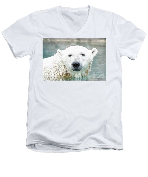 Wet Polar Bear Men's V-Neck T-Shirt