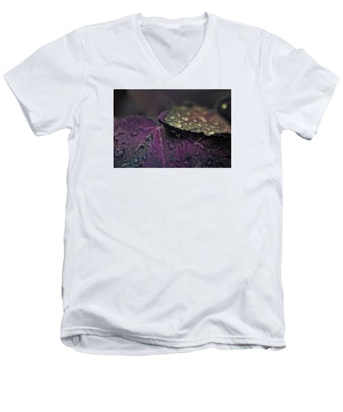 Wet Purple Leaves Men's V-Neck T-Shirt