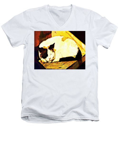 What Do Cats Dream Of Men's V-Neck T-Shirt