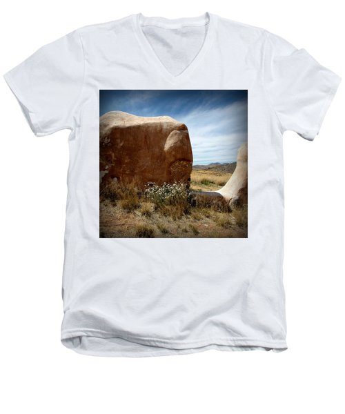 Men's V-Neck T-Shirt featuring the photograph Where Have All The Flowers Gone by Joe Kozlowski