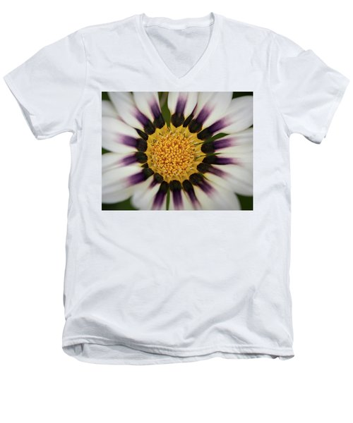 White And Purple Zinnia With Yellow Men's V-Neck T-Shirt