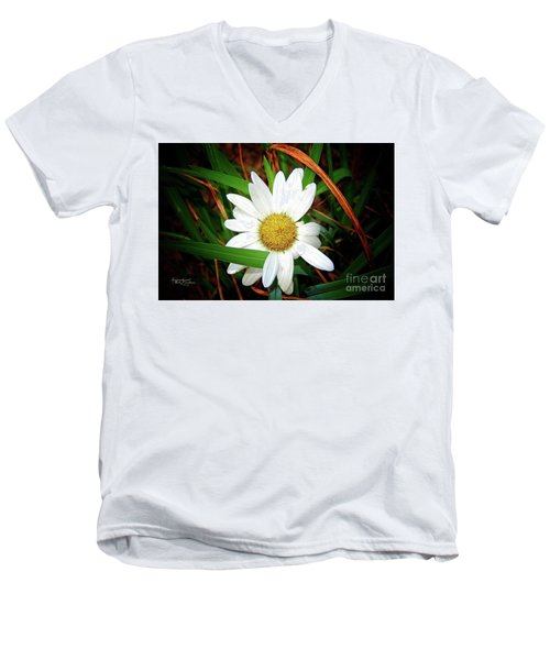 White Daisy Men's V-Neck T-Shirt by Inspirational Photo Creations Audrey Woods