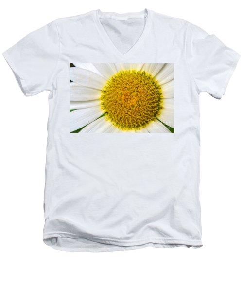 White Daisy Close Up Men's V-Neck T-Shirt