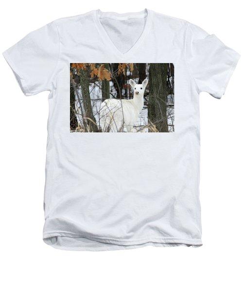 White Deer Vistor Men's V-Neck T-Shirt by Brook Burling