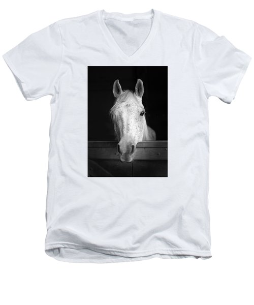 White Horse Men's V-Neck T-Shirt by Marion Johnson