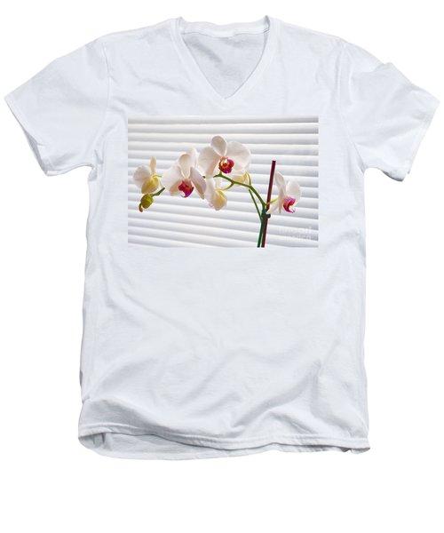 White Orchids On White Men's V-Neck T-Shirt