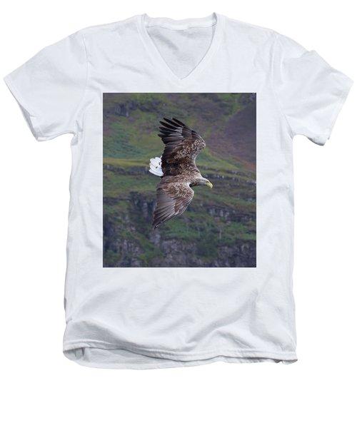 White-tailed Eagle Banks Men's V-Neck T-Shirt