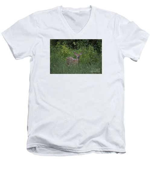 Men's V-Neck T-Shirt featuring the photograph Whitetail Fawn 20120711_37a by Tina Hopkins