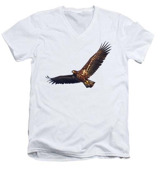 Whitetailed Eagle Transparent Men's V-Neck T-Shirt