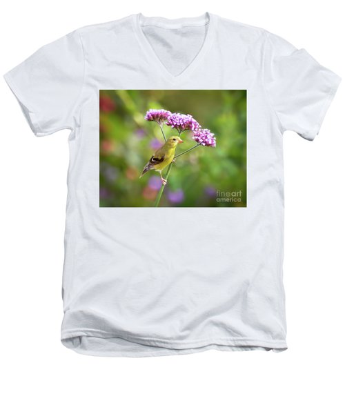 Men's V-Neck T-Shirt featuring the photograph Wild Birds - Female Goldfinch by Kerri Farley
