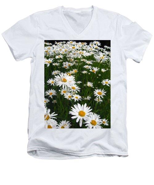 Wild Daisies Men's V-Neck T-Shirt