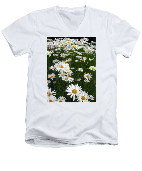 Wild Daisies Men's V-Neck T-Shirt