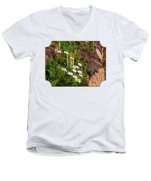 Wild Daisies In The Rocks Men's V-Neck T-Shirt by Gill Billington