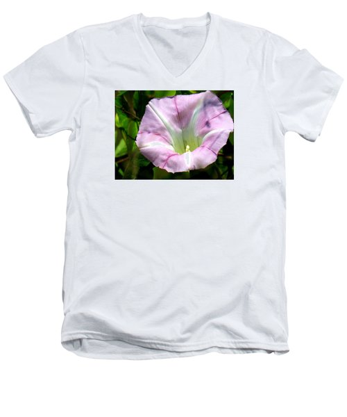 Wild Morning Glory Men's V-Neck T-Shirt by Eric Switzer