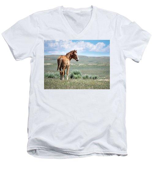 Wild Mustang Colt Of Sand Wash Basin Men's V-Neck T-Shirt
